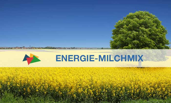 Energie-Milchmix